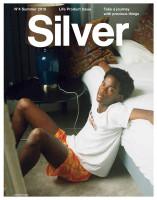 479_Silver no.4
